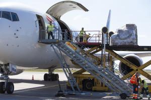 The plane - 907X4846